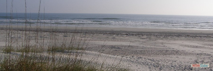 View of beach from boardwalk_900x300